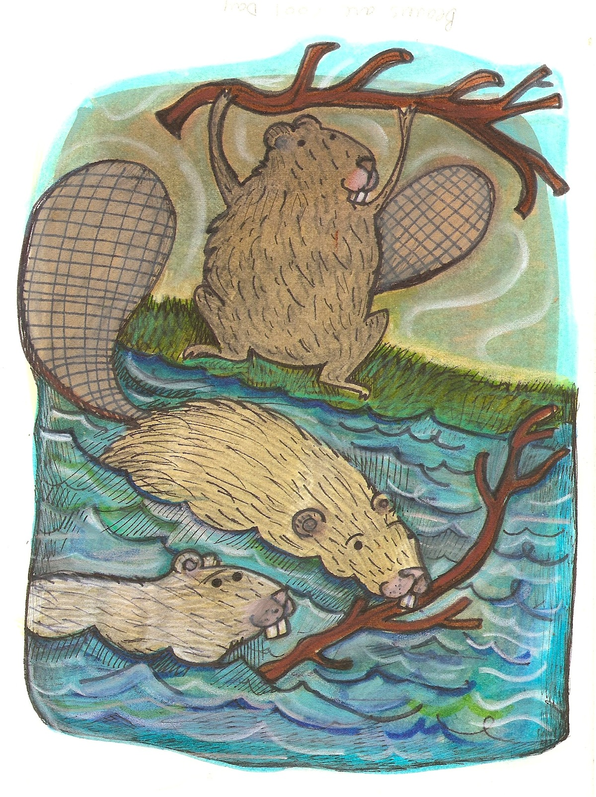 beavers are workers