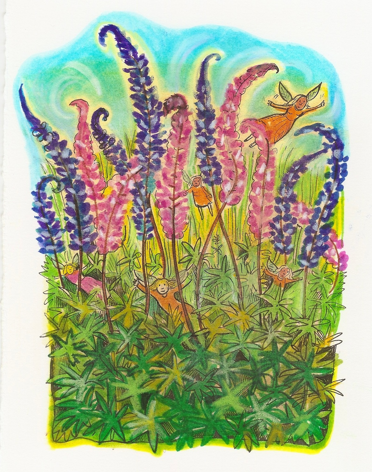 fairies and lupine